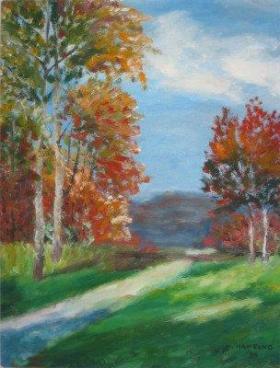 Leśna droga1